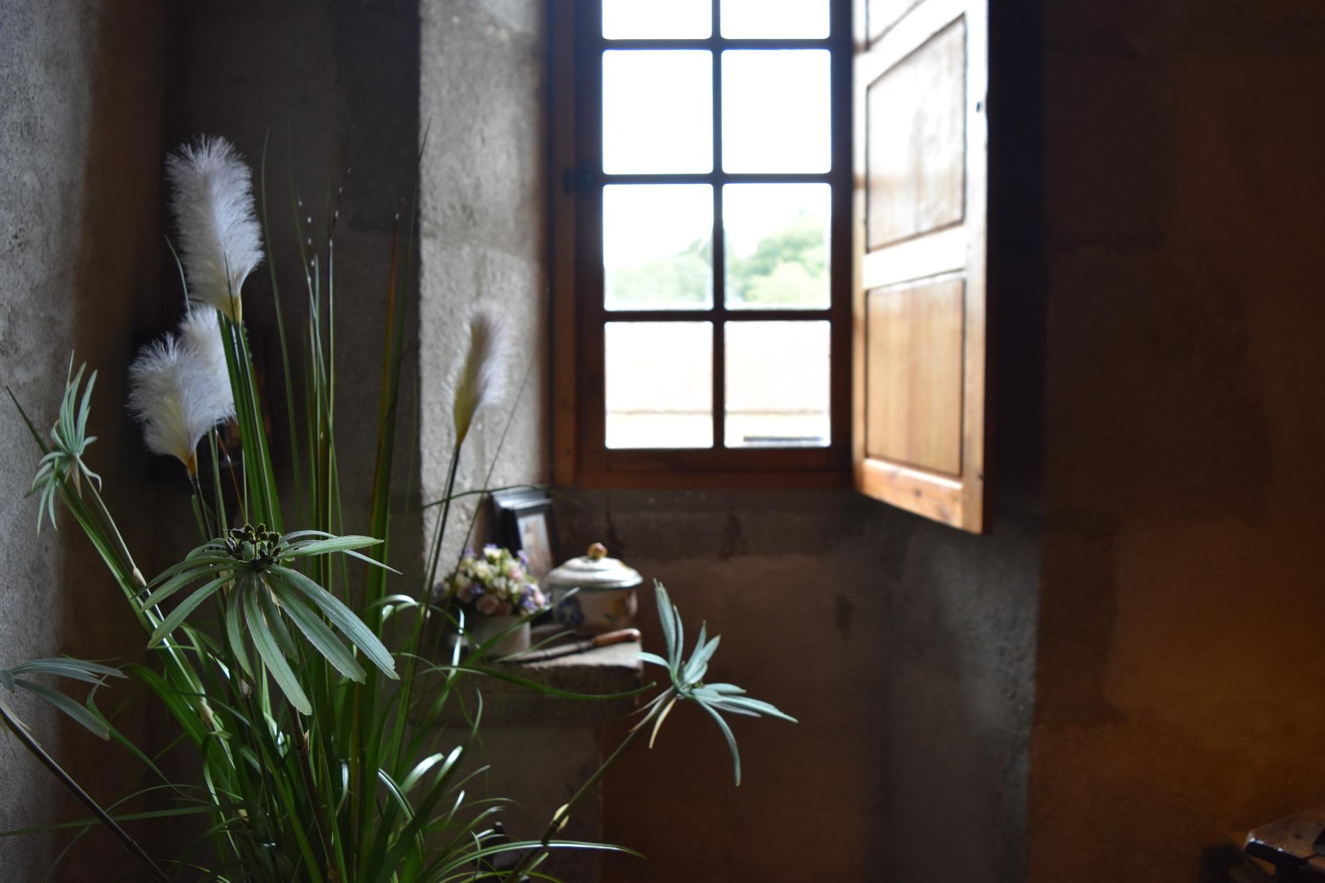 Houses For Sale in Dordogne